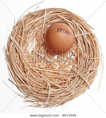 Recall Concept Egg In Nest