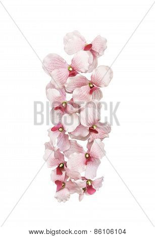 Artifical Pink Orchid Flowers Isolated