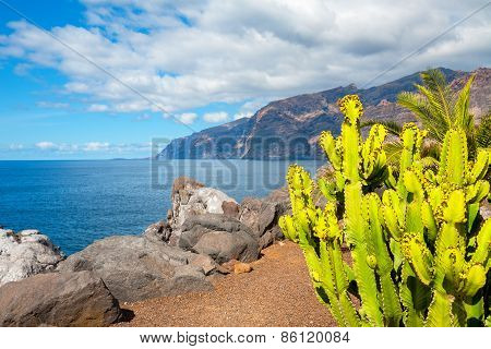 Coastline In Puerto De Santiago. Tenerife, Spain
