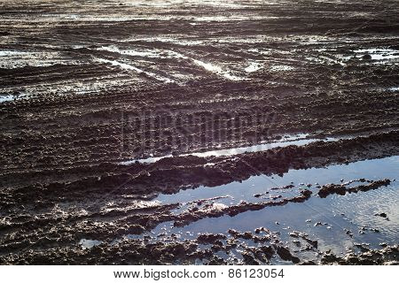Wet Ground Surface With Lots Of Wheel Tracks