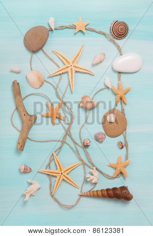 Arrangement of different shells on blue or turquoise wooden background.