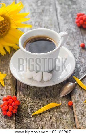 Coffee Cup Black Wooden Board Brown Rowan Sunflower White