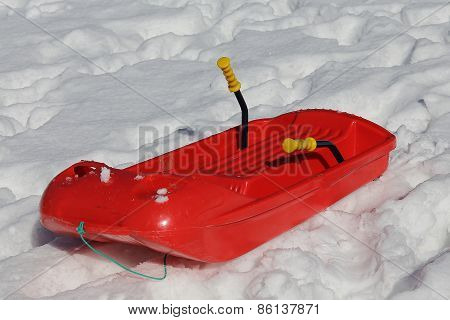 Big Red Bob To Play In The Snow In Winter