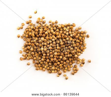 Some coriander seeds isolated on white background