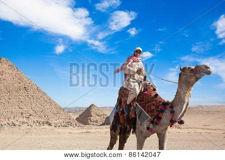 Bedouin Seats Camel