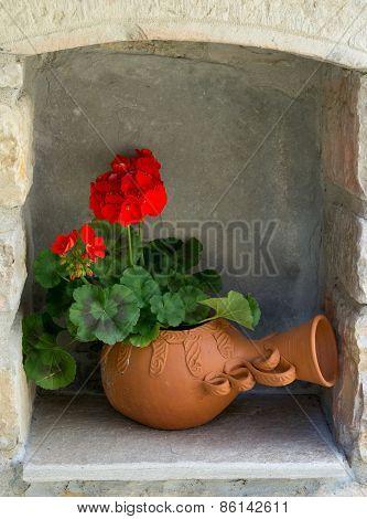 Geranium flower.