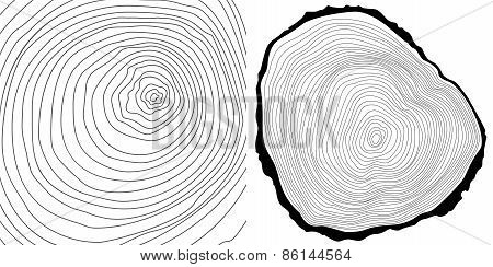 Vector tree rings background and tree log cutted