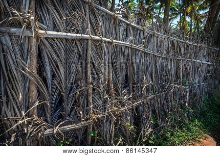 A fence made of dried leaves of the coconut palm