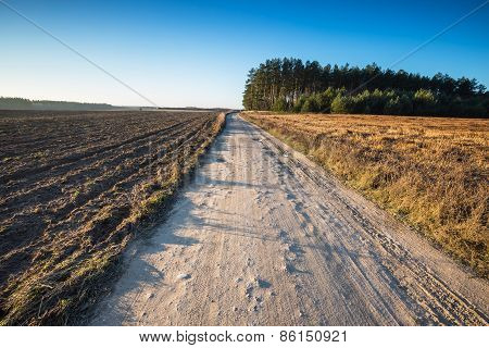 Field With Rural Road