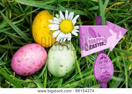 Easter egg hunt sign against small easter eggs nestled in the grass with a daisy