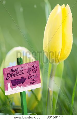 Easter egg hunt sign against yellow tulip growing with easter egg