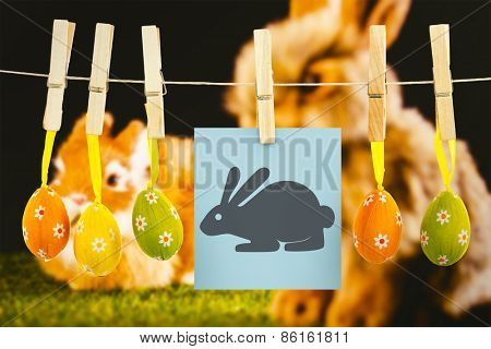 easter bunny against ginger bunny rabbit