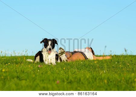 Sporty Woman And Dog Resting And Relax