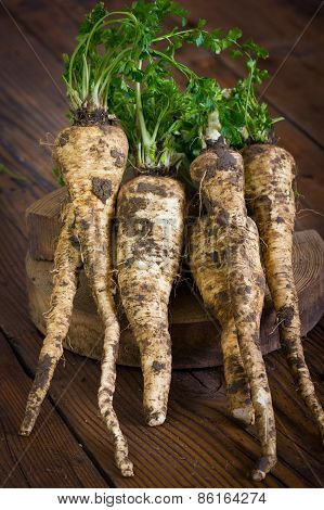 Parsley root on the wooden table