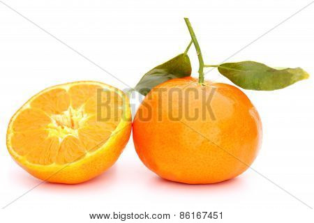 Mandarin And Half