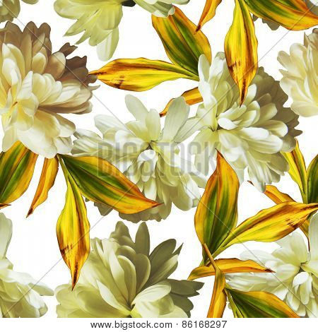 art vintage floral seamless pattern  with white asters isolated on white background