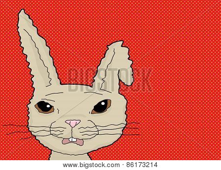 Scared Rabbit On Red