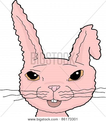 Pink Bunny With Bent Ear