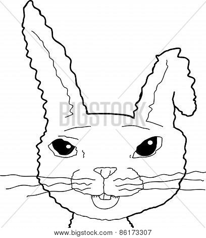 Outlined Bunny With Bent Ear