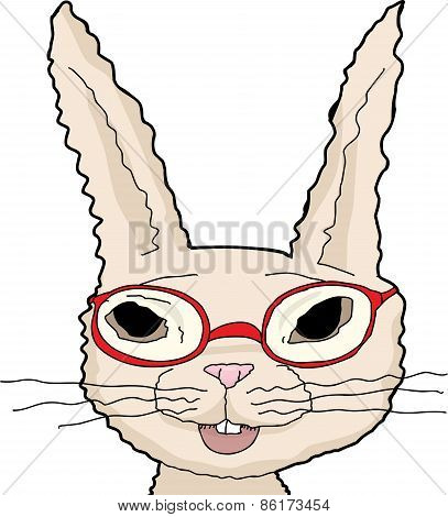 Isolated Rabbit In Red Glasses