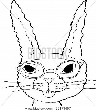 Outline Of Bunny In Glasses