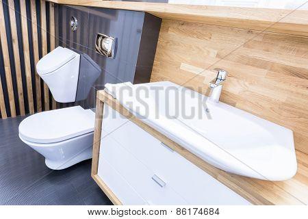 Oblique View Of Toilet Interior