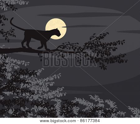 EPS8 editable vector cutout illustration of a leopard on a tree branch silhouetted against the moon at night
