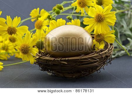 Gold Egg In Nest Surrounded By Spring Flowers