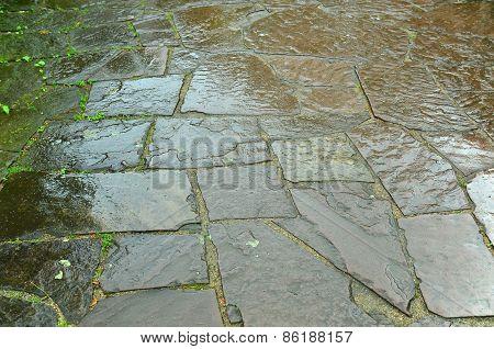 Rain wet pavers