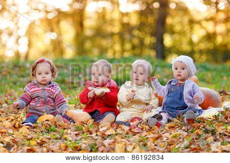 Four cheerful little baby sitting on yellow autumn leaves