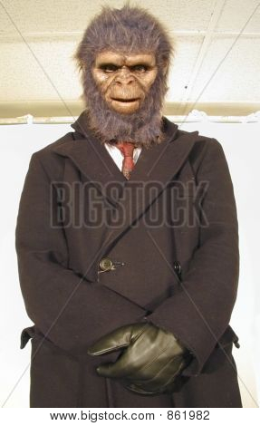 man wearing ape mask