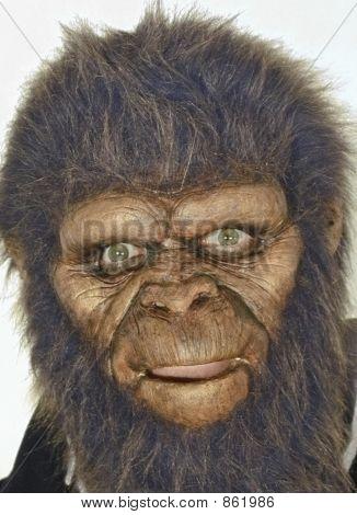 man wearing ape mask