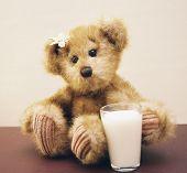 picture of teddy-bear  - little girl bear endorses milk for health  - JPG