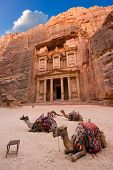 stock photo of treasury  - Camels in front of the treasury or Al Khazna it is the most magnificant and famous facade in Petra Jordan it is 40 meters high 2014 in Jordan - JPG
