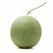 image of muskmelon  - Close up of whole cantaloupe fruit on white background - JPG