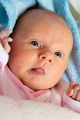 stock photo of diaper  - Closeup little newborn baby girl three weeks lying in diaper with open eyes - JPG