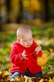 picture of crawling  - Cheerful baby in a red dress playing with yellow leaves - JPG