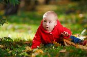 pic of crawling  - Cheerful baby in a red dress playing with yellow leaves - JPG