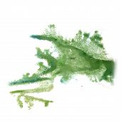 image of insults  - abstract light green hand drawn watercolor blot insult Rorschach psychology - JPG