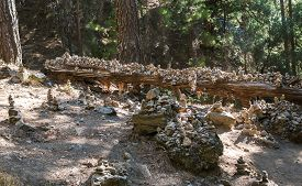 picture of samaria  - Various stabled rocks on the way through the Samaria Gorge - JPG