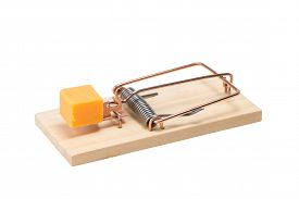 stock photo of mouse trap  - Mouse trap baited with a large piece of cheddar cheese - JPG