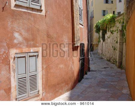 Moody Provence