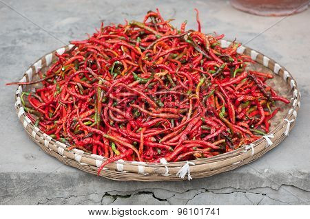 Red Pepper Drying Outdoors