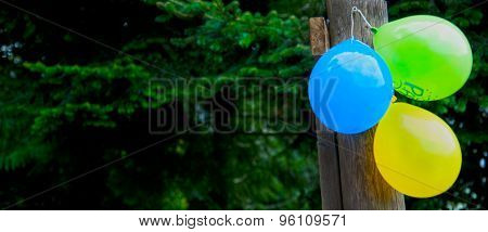 Colorful Balloons Fixed With A String On A Timber Needle