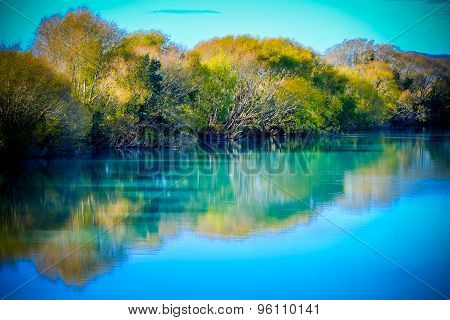 Trees In Autumn Color Reflecting Into The River