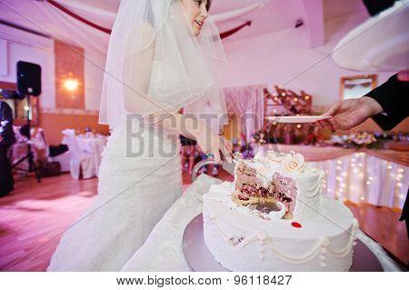 Newlyweds Cut  Wedding Cake