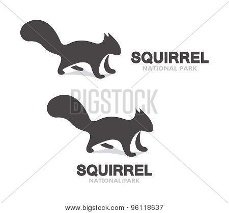 Vector gray squirrel logo or icon