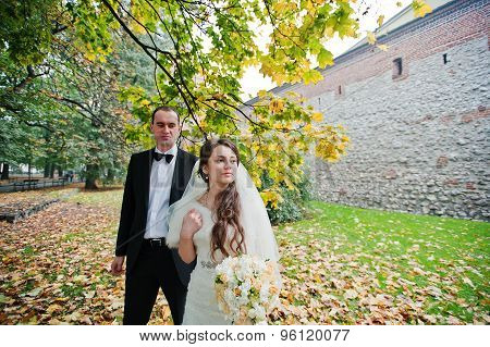 Just Married In Autumn Park