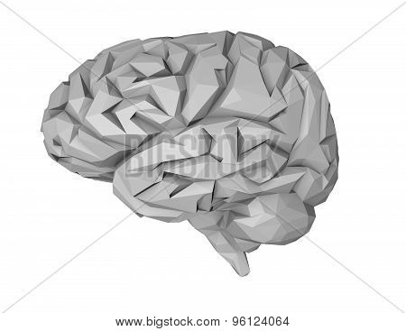 Geometrical 3D Brain Illustration, Isolated On White.