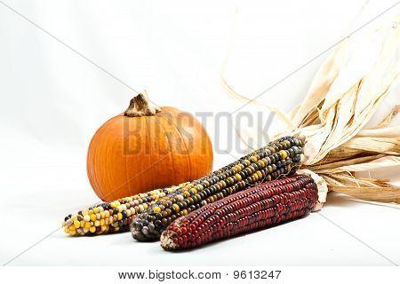 Pumpkin And Corn